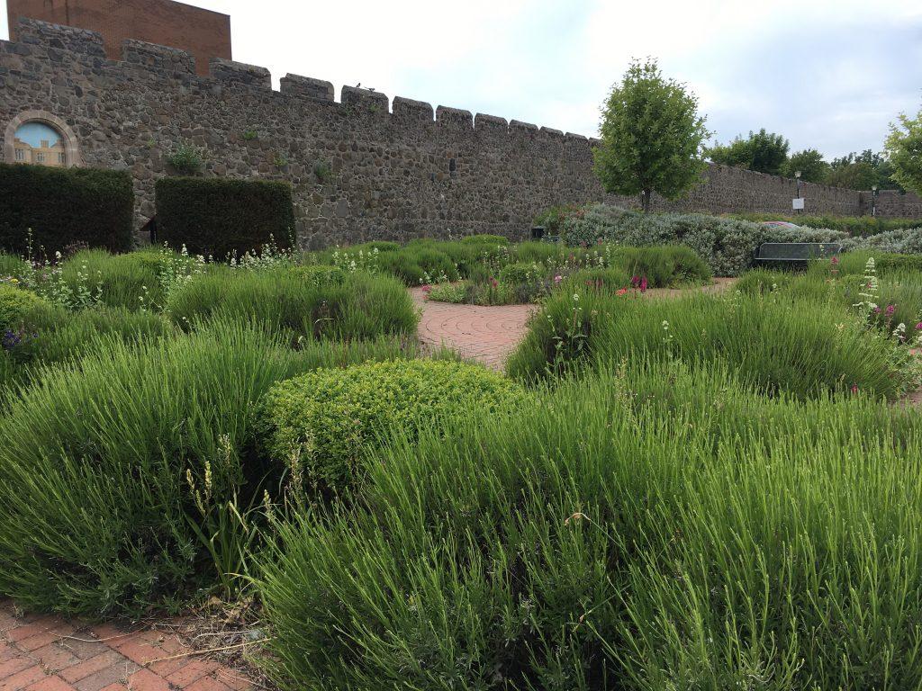 Jacobean Knot Garden