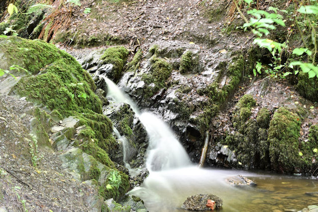 Cregagh Glen & Lisnabreeny Waterfall