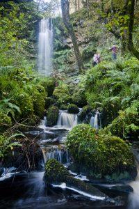 Navar Forest & Blackslee Waterfall